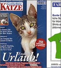 in-katze-small